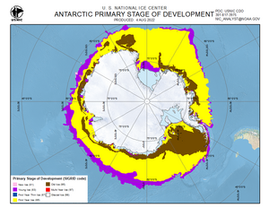 Thumbnail image of Antarctic stage of